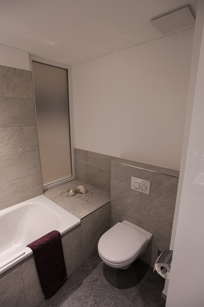 umbau dachstockwohnung binz umbauten individualbau ag martin pfister. Black Bedroom Furniture Sets. Home Design Ideas